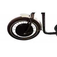 Kit assistance électrique pour tricyles Tonicross